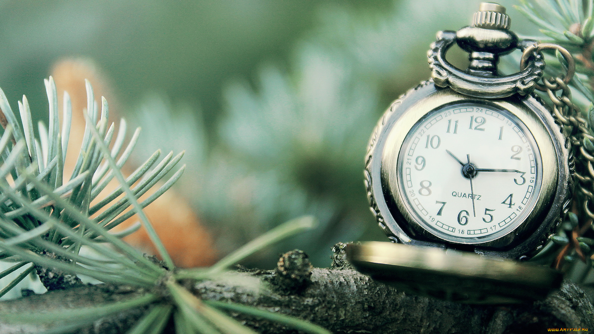 Картинки часов зим